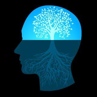 Questione di Mindset - Riprogrammare il Cervello con i Pensieri
