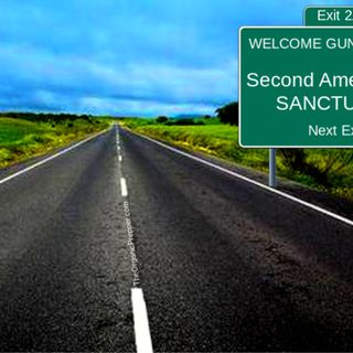 REBELLION: Second Amendment Sanctuary Cities, Counties, and STATES Spring Up Across the Country +