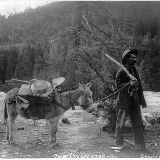All that Glitters? Legacies of the California Gold Rush