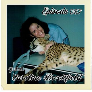 The Cannoli Coach: Creativity is Like Poop---Everyone is Full of It w/Dr. Caroline Brookfield | Episode 087