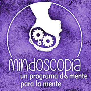 Programa 29 - Entendimiento -