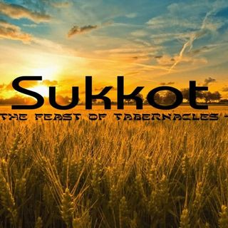 Sukkot Has Come!