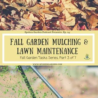 Ep24 - Fall Gardening Mulching & Lawn Maintenance