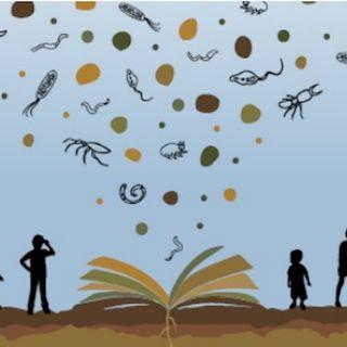 La biodiversità del terreno è roba da bambini