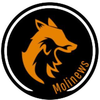 Molinews