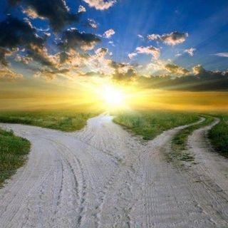 Lektion 317: Ich folge dem Weg, der mir bestimmt ist.