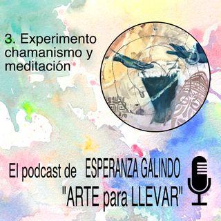 003. Experimento meditación y chamanismo - Arte para llevar