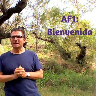 AF 1 Bienvenida