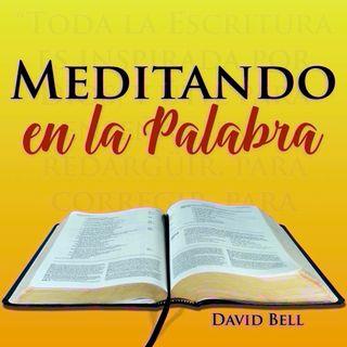 MelP_374-Salmo_66-12