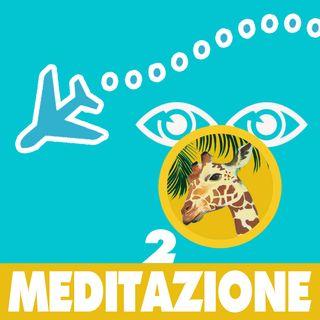 Meditazione 2 giraffe della savana