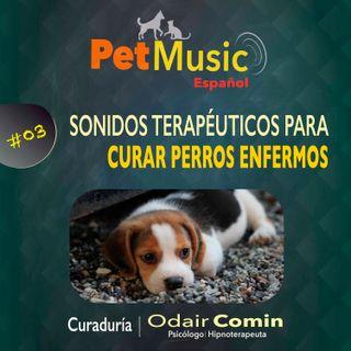 #03 Sonidos Terapéuticos para Curar Perros Enfermos | PetMusic
