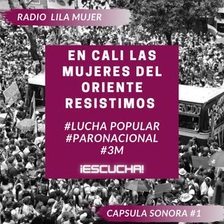 Càpsula 1. Mayo 3 Paro Nacional Colombia. En Cali las mujeres del Oriente resistimos
