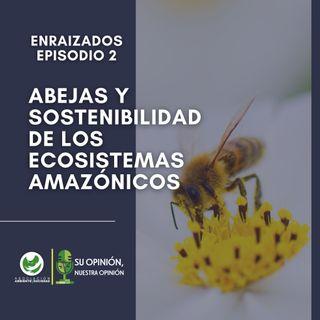 Abejas y sostenibilidad de los ecosistemas amazónicos