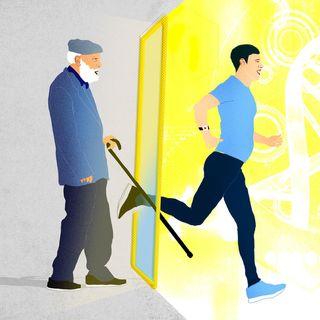 Il segreto per contrastare l'invecchiamento mTOR