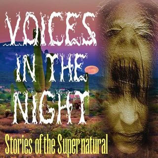 Voices in the Night | Interview with Samantha Gollakner | Podcast
