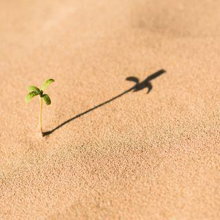 Åndelig vækst eller åndelig stress - Tema 40