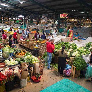German Andres Molina Plazas de Mercado