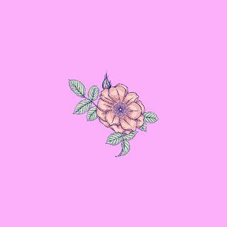 Episodio 1 - Respiro fiori