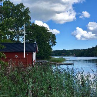 89. Katsaus kirjaan Sannsagor av Elisa Ollila Ögren