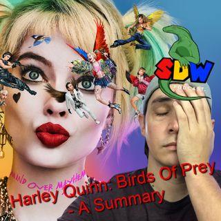 Harley Quinn : Birds of Prey - A Summary