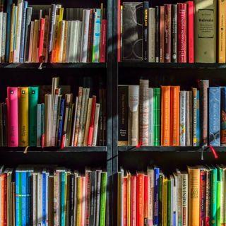 Steve Rimmer #Books - 090719151
