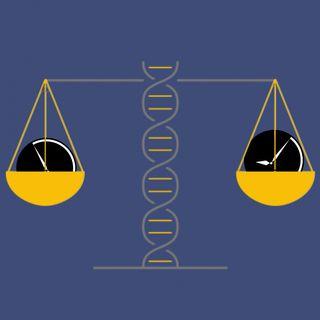 Bioetica: perché è figlia del nostro tempo? Un'introduzione ai principi