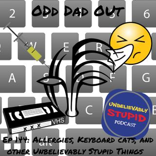Allergies, Keyboard Cats, and Other Unbelievably Stupid Things: ODO 144