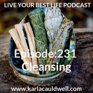 Ep 231 - Cleansing