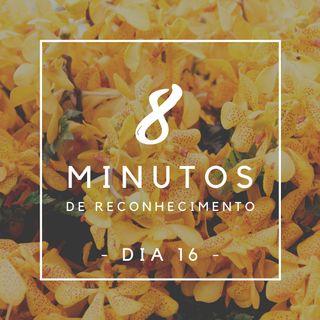 8 Minutos de Reconhecimento - Dia 16