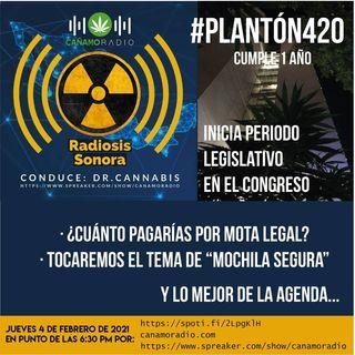 RADIOSIS Sonora Numero 25