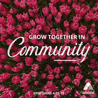 Growing in Your Community