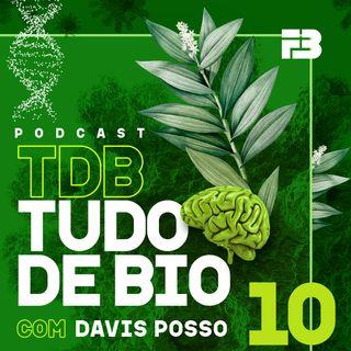 TDB Tudo de Bio 010 - O fenômeno da ecolocalização