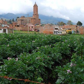 Miguel Benavides - Sec. Agricultura