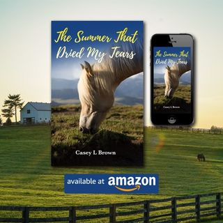 Guest Author (Casey Brown) Book Top-seller (The Summer That Dries My Tears)