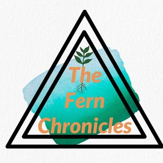 The Fern Chronicles Podcast