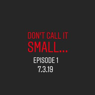 Ep 1: About Don't Call It Small...Business