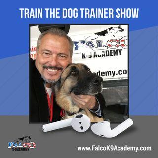 TTDT Episode 21 Training Humans Part 1
