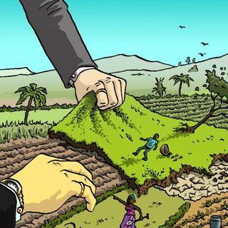 Land Inc., il land grabbing in mostra a Busto Arsizio