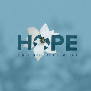Hope | Keeping Watch in the Dark