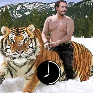 Una Rivoluzione in cui brancoliamo: Facebook (non) cavalca la tigre