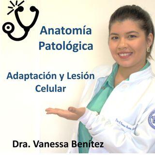 Parte I - Adaptación y Lesión celular