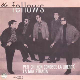The Fellows - La mia strada