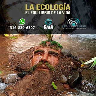 NUESTRO OXÍGENO La ecología y el equilibrio de la vida