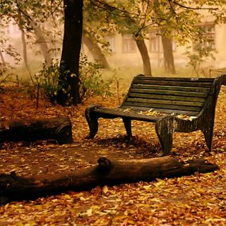 C'era una volta l'autunno