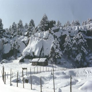 Alerta en Chihuahua por fuertes nevadas