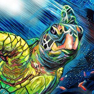 43.L'Uomo Tartaruga - Fiaba Ligure