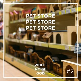 Pet Store Ambience | White Noise | ASMR sounds for deep Sleep | Relax | Study | Work | Episode 2