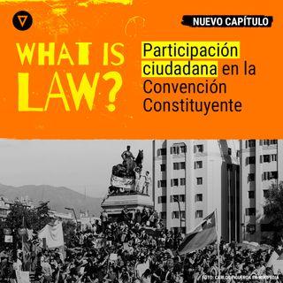 Capítulo 27 -  Participación ciudadana en la Convención Constituyente