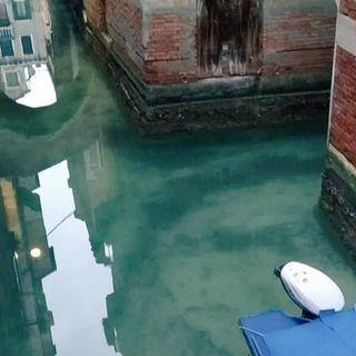 I canali tornano limpidi: intervista a Marco Capovilla (Venezia Pulita)