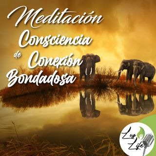 Meditación - Consciencia de conexión bondadosa